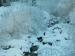 alpe-devero-06012012-413